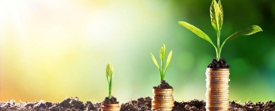 Placement-financier-optimisation